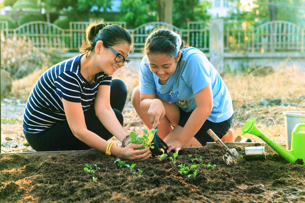 Mother And Young Daughter Planting Vegetable In Home Garden Fiel
